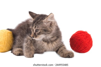 Funny little kitten. Isolated on a white background.