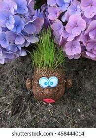 Funny mr potato head with grass as hair