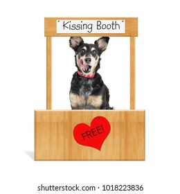 Funny photo of a cute mixed breed dog in a free kissing booth with tongue out