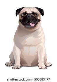 Funny Pug illustration