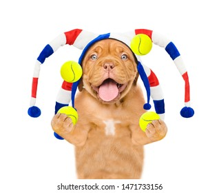 Funny puppy in jester cap juggles with tennis balls. isolated on white background