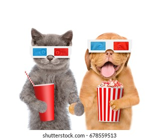 Funny puppy and kitten in the 3d glasses with popcorn basket and cola. isolated on white background