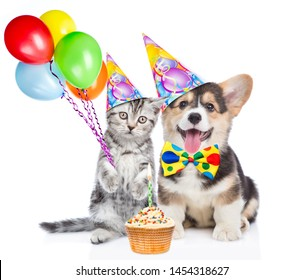 Funny puppy and kitten in party hats holds balloons with little birthday cupcake. isolated on white background