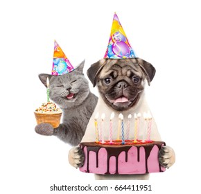 Funny puppy and kitten in party hats holding cupcake and birthday cake with many burning candles. isolated on white background