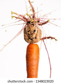 funny puupet made with potato and carrot infront of white background