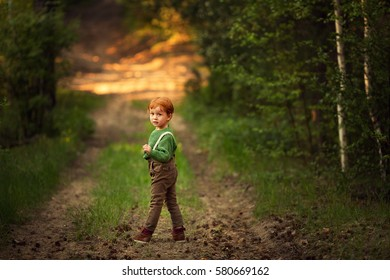 Funny red-haired boy walking in the sunset forest. Image with selective focus and toning.