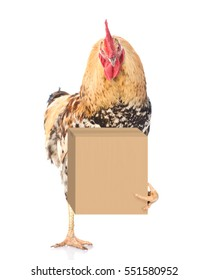 Funny Rooster delivering a big package. isolated on white background