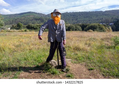 Funny scarecrow in the field. Scarecrow with red beard and hat and lamp. Harvest protection and security concept. Rural landscape. Farm guard. Outdoor security doll in meadow.