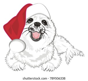 funny seal in red hat
