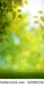 Funny seasonal panoramic banner with bright foliage and beauty bokeh