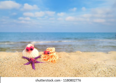 Funny shells with eyes at the beach with the sea in the background