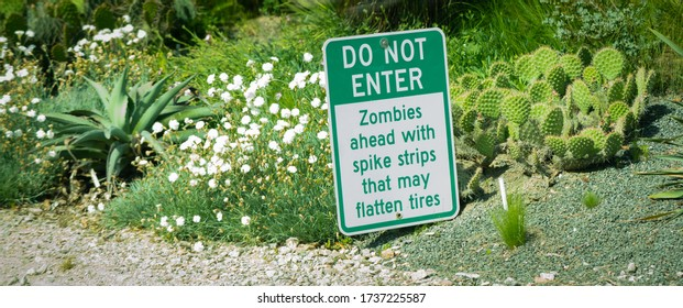 Funny sign in yard where cactus plants are growing, about zombies and spikes.