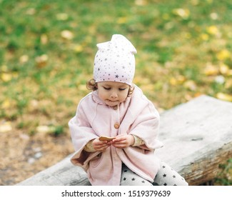 Funny small pretty girl in park,outdoor.Autumn time.Toddler girl is eating cookies on the banch.