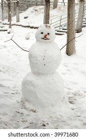 Funny snowman with carrot nose on winter background.