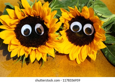 funny sunflowers with wobbly eyes