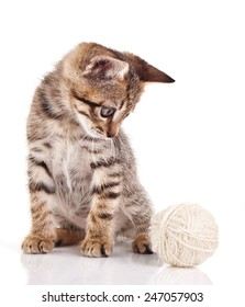 funny tabby kitten with a ball isolated on a white background