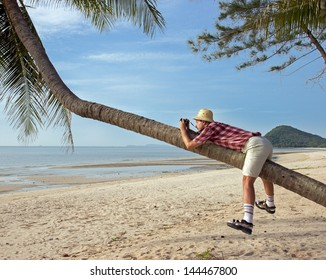 Funny tourist photographing the palm. Traveler with a camera sitting on the coconut palms on the coast. Photographer sitting on palm tree on exotic holiday. Brave photographer on vacation.
