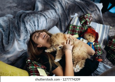Funny young woman having fun with little puppy on a sofa. Spend together winter holidays, a lot of presents around. Tender skin, beautiful face. Red curly maltipoo with black nose and short tail.