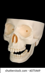 A funny-looking plastic skull isolated on a black background, top of the head missing.