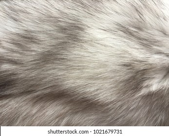fur background/ grey fur background, natural/ fur background