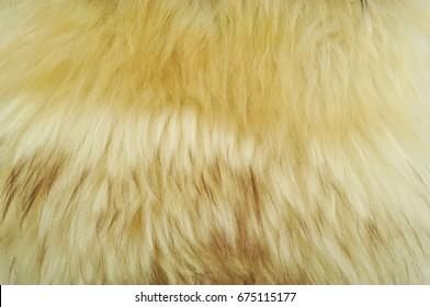 Fur beige