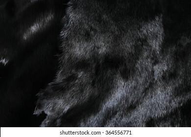 Fur of black mink