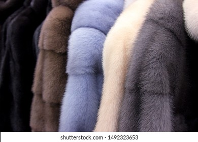 The fur coats. The fluffy background. In the wear shop