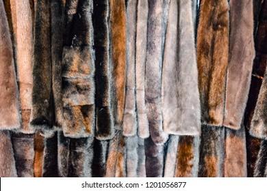 Fur coats on hangers. Fur store. fur coats in a row.