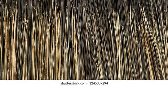 Fur texture close up