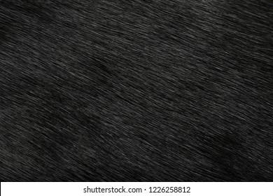 Fur, wool close-up background texture black fur brown wool