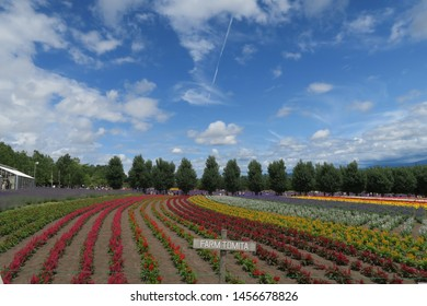 Furano city/Japan:July 18 2019: View from Tomita lavender farm in summer .The most famous tourist destination in July