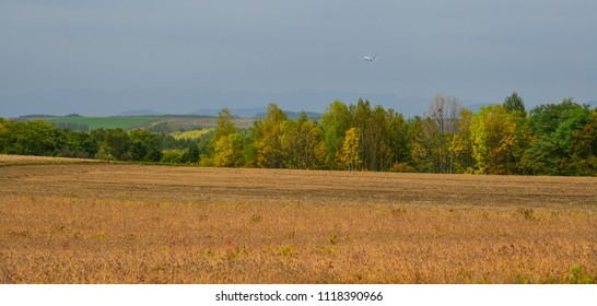 Furano, Japan - Oct 4, 2017: Rural scenery with grass field at autumn in Furano, Japan.