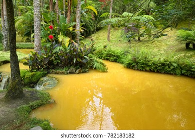FURNAS, AZORES, PORTUGAL - JUNE 27, 2017: Stream of natural mineral water of yellow color across Terra Nostra Garden, located in Furnas town on Sao Miguel island of Azores, Portugal.