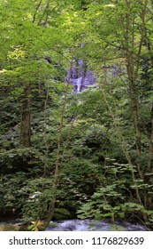 Furo falls of Oirase mountain stream in Aomori, Japan