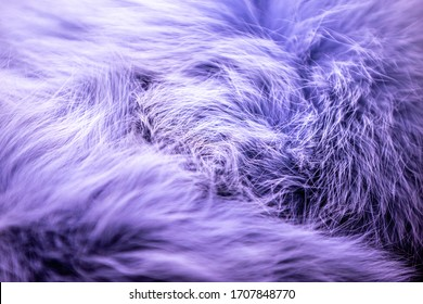 Furry fabric background, copy space colored background