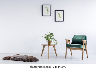 Furry rug on the floor in white room with plants and green velvet armchair