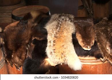 Furs lying on barrels