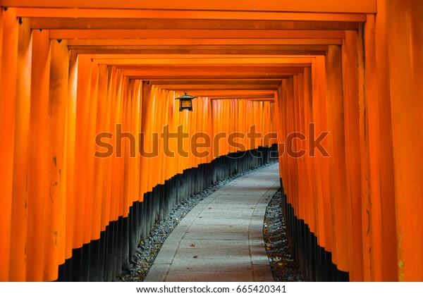 Fushimi Inari Shrine a day break, in Kyoto Japan