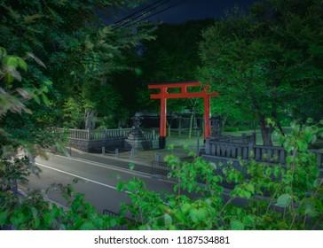 Fushimi Inari Taisha Otabisho entrance Torii by night. Kyoto, Japan.