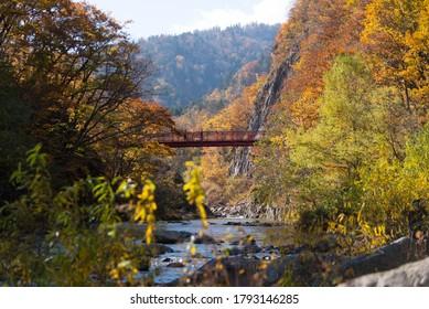 上山渓二見吊橋・紅葉