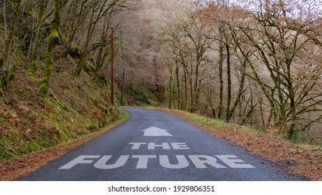 The Future with arrow written on a country lane in a wood