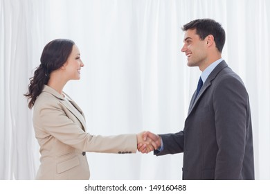 Future partners shaking hands in bright office