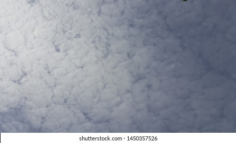 Fuzzy white clouds Like a cotton ball in the sky