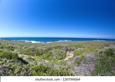 Fynbos vegetation around a lighthouse blooming with spring flowers, leading up to the rugged Atlantic coast, taken with a fish eye lens, outside of Gansbaai, South Africa
