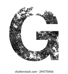 G letter double exposure with black and white leaves isolated on white background,clipping path