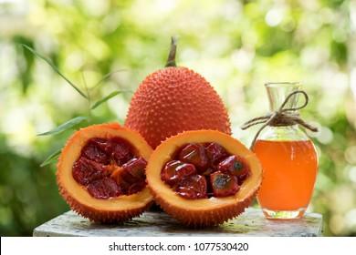 gac fruit and oil Medicinal properties