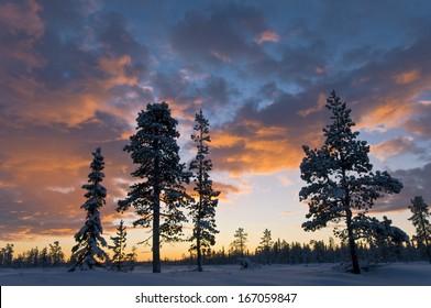 Gaellivare, Lappland, Schweden