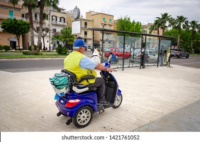 Dog Scooter Images, Stock Photos & Vectors | Shutterstock
