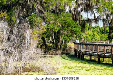 Gainesville, USA - April 27, 2018: Paynes Prairie Preserve State Park Watershed trail hiking path boardwalk in Florida marsh with people walking