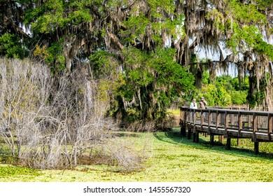 Gainesville, USA - April 27, 2018: People walking in Paynes Prairie Preserve State Park Watershed trail hiking path boardwalk in Florida marsh